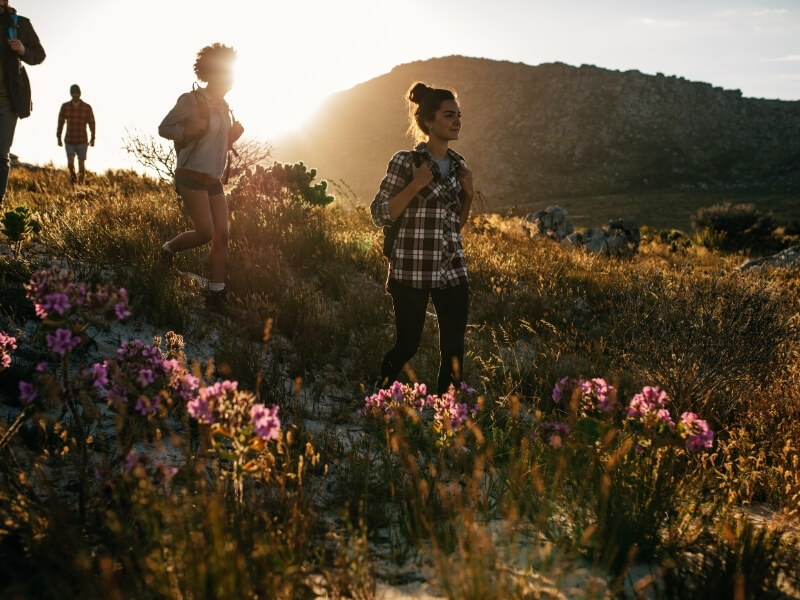 Two women walk through tall grass and wildflowers with two additional people in silhouette in the background. The sun is setting behind the group with a tall hill or mountain in the distance.