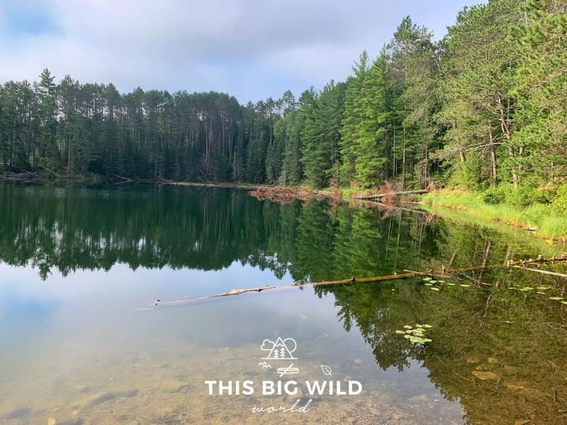 A crystal clear lake with a perfect reflection of the forest along the shoreline in northern Minnesota.