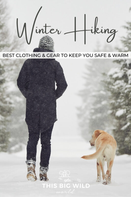 Text: Winter Hiking - Best clothing and gear to keep you safe and warm Image: Person walking away from the camera with a yellow lab walking alongside them on a snowy trail lined with pine trees.