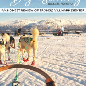 Text: Dog Sledding Tromso Norway, an honest review of Tromso Villmarkssenter. Image: White dogs with red boots pull a dog sled through the snow covered landscape in Tromso Norway.