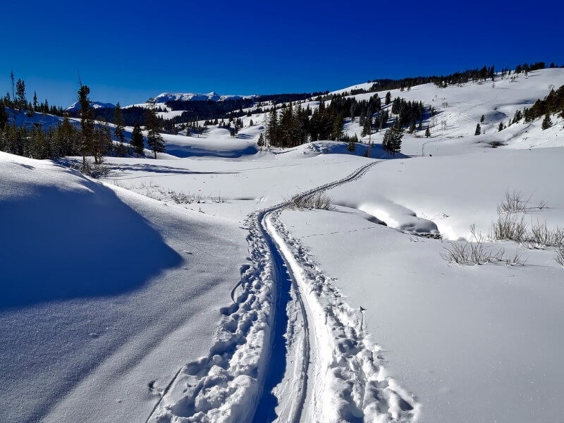 A path in the snow winds off into the distance up into the mountains near Yellowstone National Park. Everything else is covered in completely untouched fresh snow.