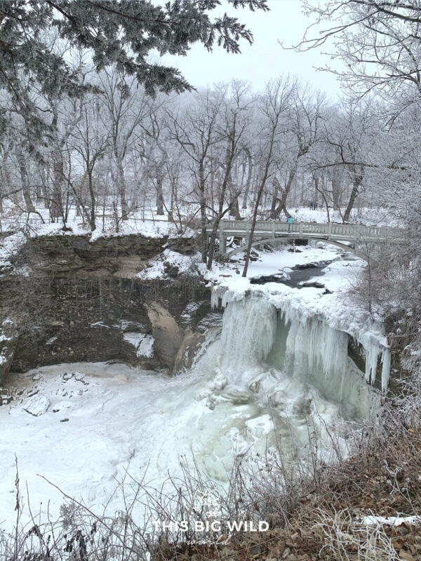 Water flows below a bridge and down the massive frozen waterfall creating a large ice formation at Minneopa Falls. The surrounding forest is covered in a beautiful dusting of frost and snow.