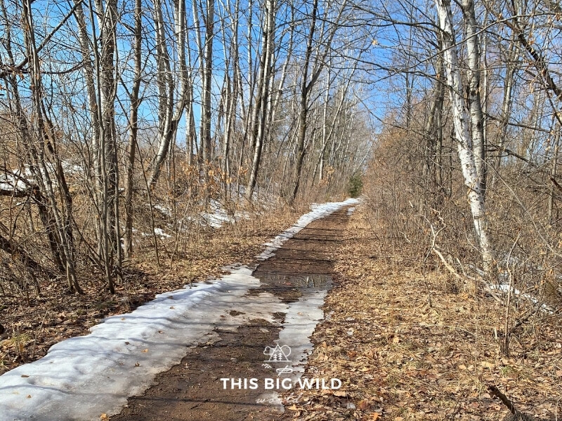 A muddy bike path is partially covered in snow and lined on both sides with trees in winter in Crosby Minnesota.