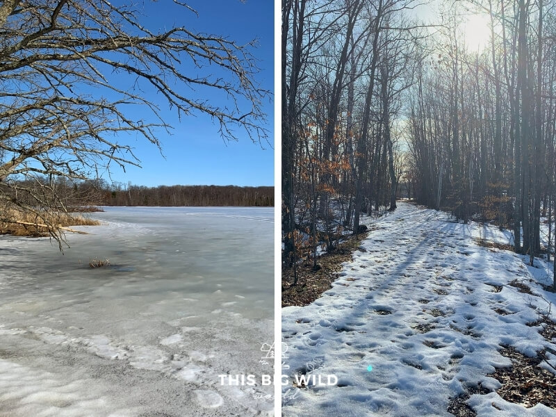 Left: Milford Mine frozen on a bright sunny winter day.  Right: A snowy trail lined with tall thin trees on both sides with the sun shining through on the way to Milford Mine Memorial Park.