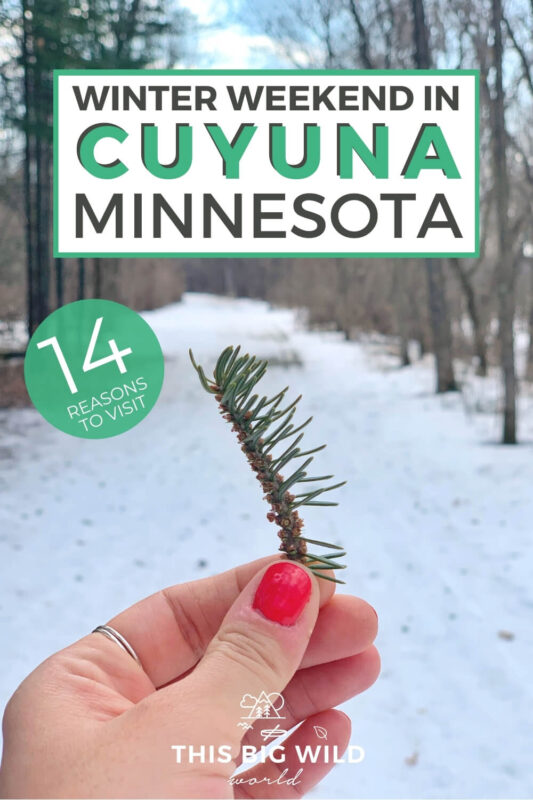 Text: Winter Weekend in Cuyuna Minnesota - 14 Reasons to Visit Image: Hand with coral nail polish holding a stem with pine needles. Behind the hand is a hiking trail covered in snow.